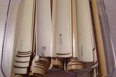 DSC00867-cane